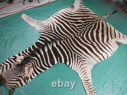 Real Zebra Skin Rug Size7.3' X 6.5' Brand New Real Burchell's Zebra Hide Rug 85